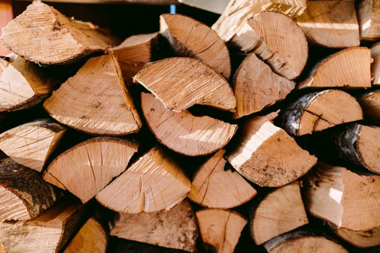 Legna da ardere e legno di faggio